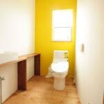 ビビットカラーの壁が効いたトイレ